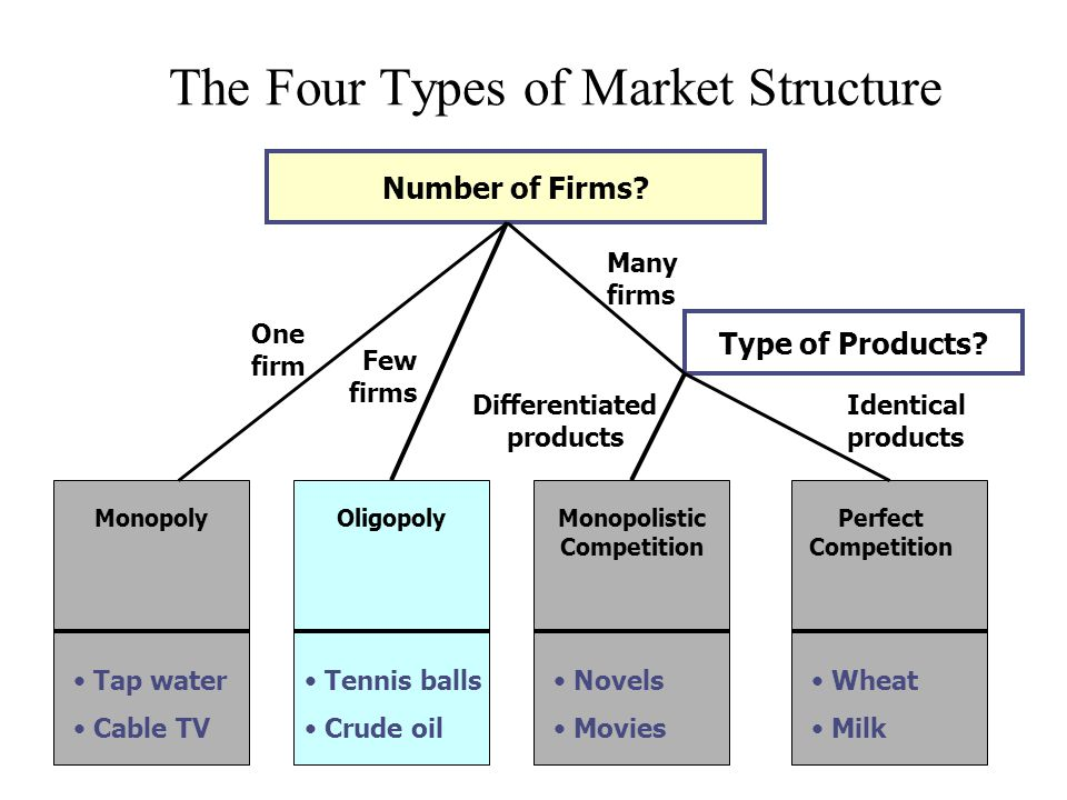 Four types of market structure infographic